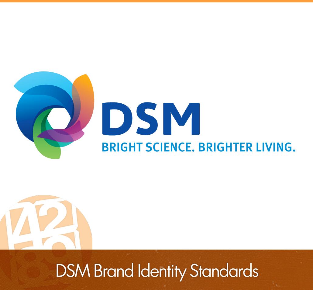 DSM Brand Identity Standards