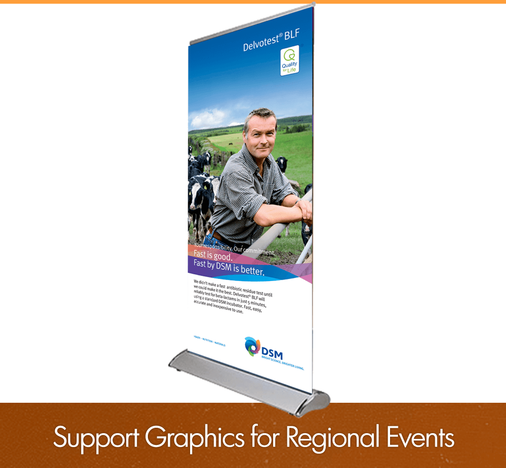 Support Graphics for Regional Events