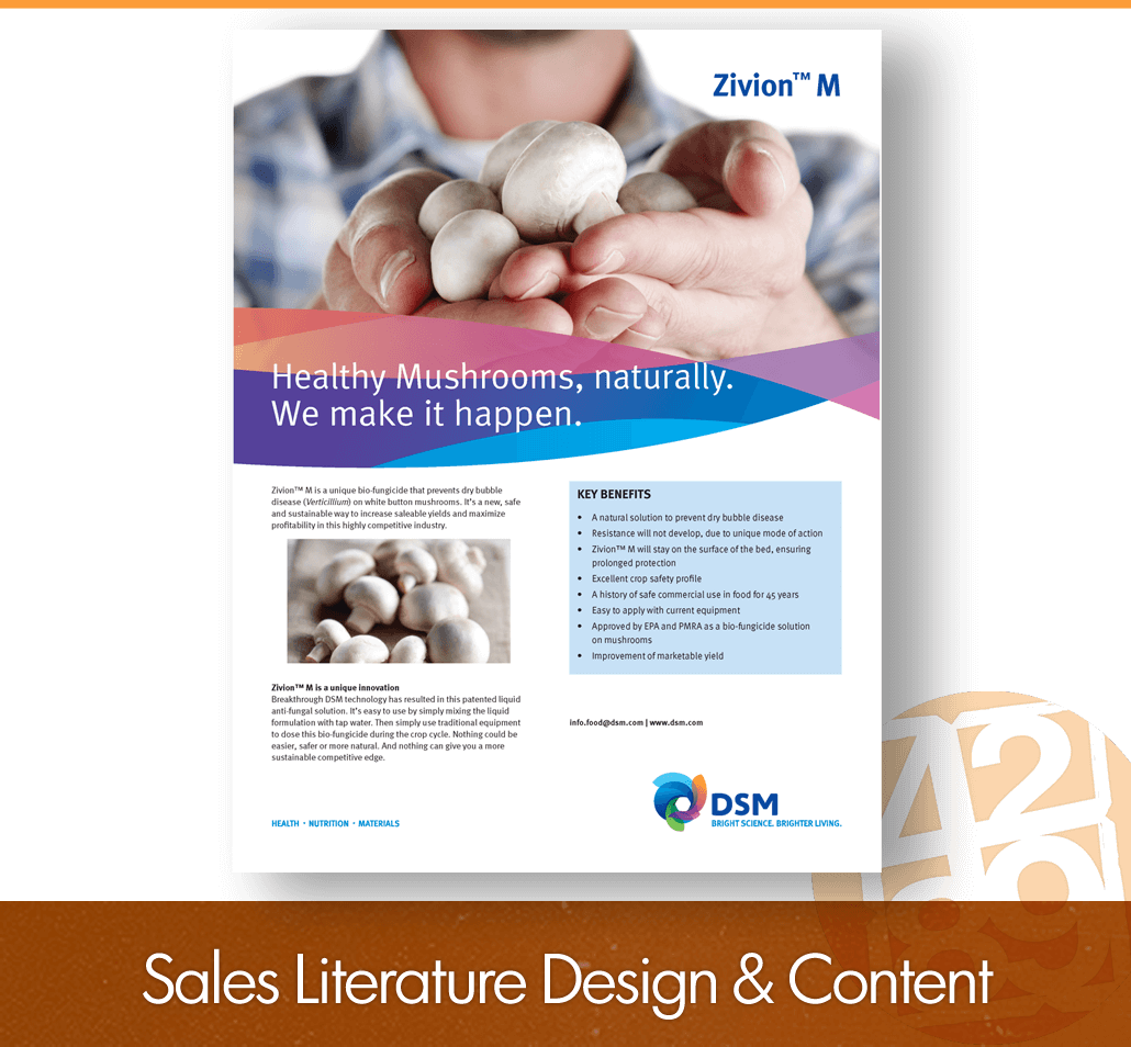 sales literature design and content